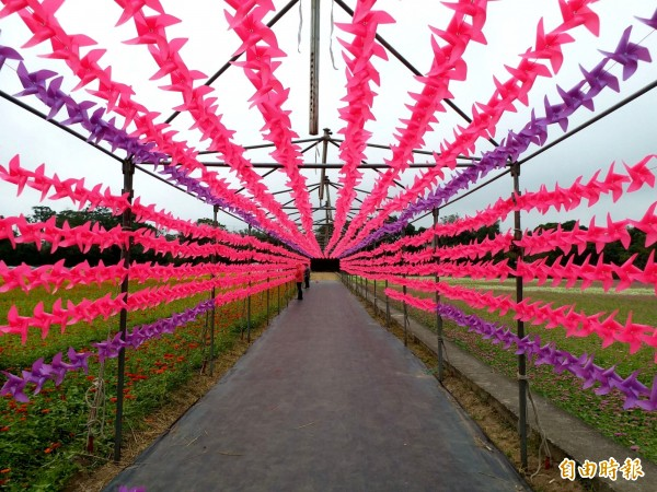 裝置藝術「粉浪漫風車隧道」,漫步其間可以感受被風車團團包圍的美好時刻。(記者李容萍攝)