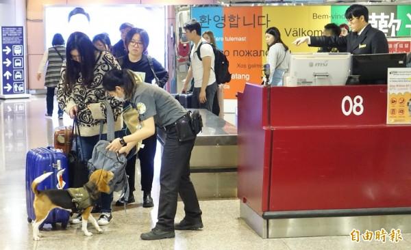 行政院長蘇貞昌今天第一天上任就到桃園機場巡視機場防治非洲豬瘟疫作業。(記者姚介修攝)