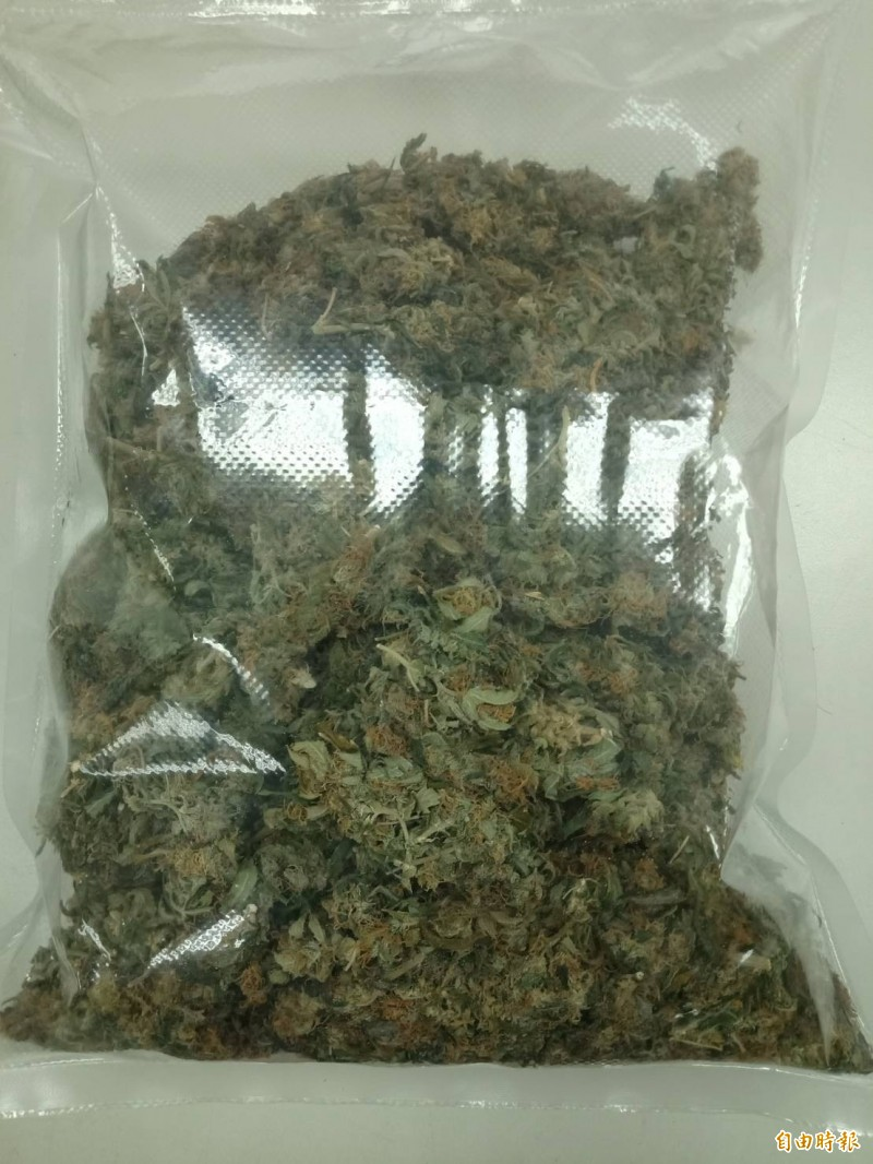 新北市淡水分局在淡水、八里查獲藏身民宅的大麻種植場,起獲市價1.2億的大麻活株。(記者吳仁捷攝)