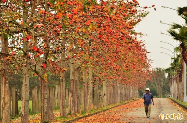 氣象局表示,白天北台灣氣溫上升幅度不多,高溫只有13到15度,中部及花東高溫約17到19度,南部高溫則約21、22度。(資料照)
