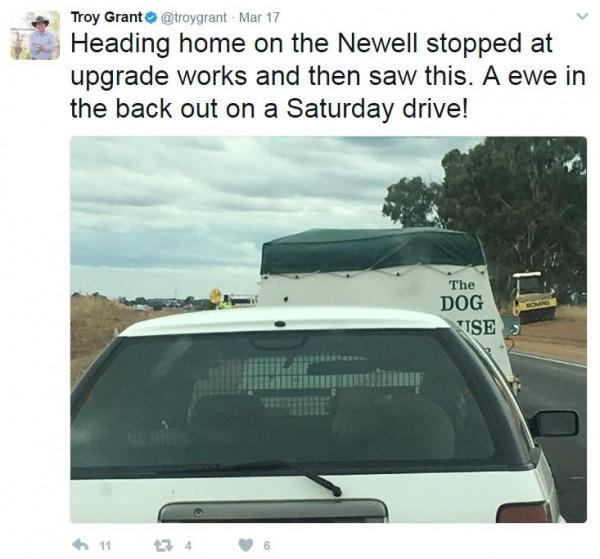 澳洲警察總長在開車時拍照並上傳社群網站,事後檢舉自己違規。(圖片擷取自「Troy Grant」推特)