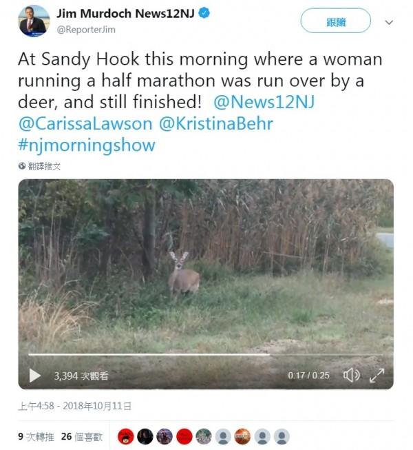 美國紐澤西州有名40歲女子7日在跑半程馬拉松時,慘遭一頭鹿撞倒在地,但她仍站起,堅持繼續跑完全程。(翻攝自「Jim Murdoch News12NJ」Twitter)