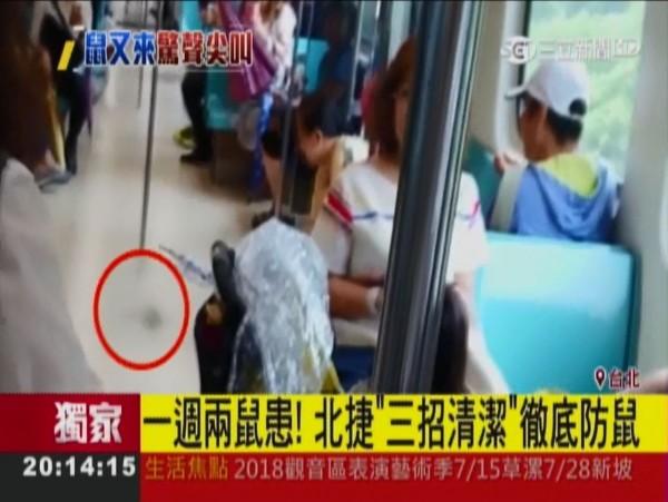今天上午捷運淡水信義線又發生老鼠在捷運內到處逃竄的狀況,不過,這次有名老婦人拿出傘直接將牠制伏。(圖擷自三立新聞)