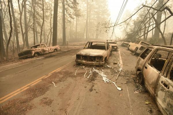 消防人員在燒成廢鐵的汽車中發現罹難者遺體。(法新社)