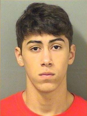 18歲少年沃汀(Timothy Adam Walding)半夜戴面具闖入鄰居家中性侵女屋主得逞,其後請求以「整理後花園」、「打理家務」作為補償。(圖擷取自palmbeachpost)