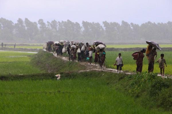 许多罗兴亚人纷纷逃到孟加拉。(法新社)
