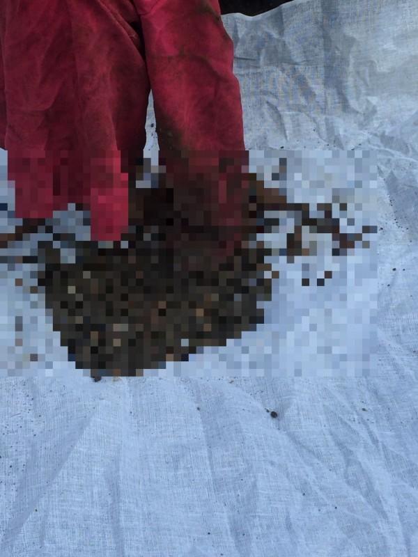 李姓夫婦疑虐殺3幼子,圖為挖出的衣物。(記者詹士弘翻攝)