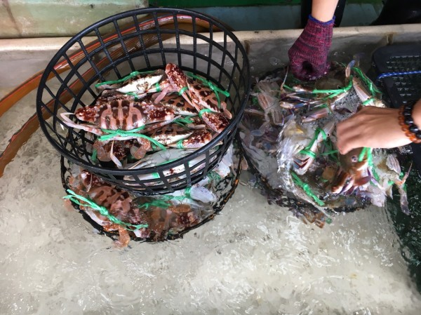 老闆都會親自去基隆海港挑新鮮的萬里蟹。(三色堇提供)