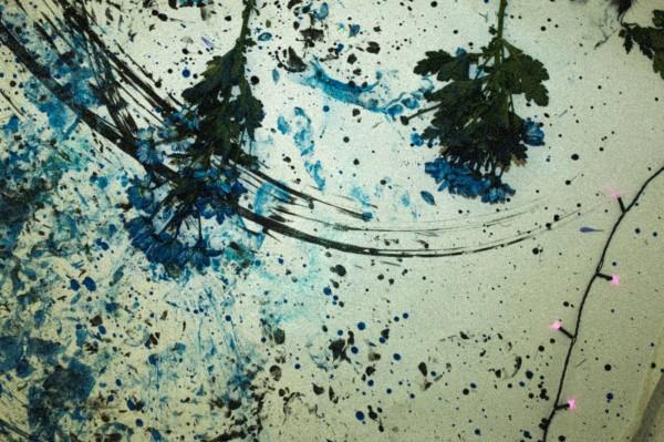 麥西雅絲親繪的作品。(擷取自臉書)
