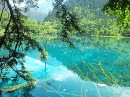 火花海過去以清澈湖水折射陽光得名,是九寨溝的必遊景點。(翻攝自網路)
