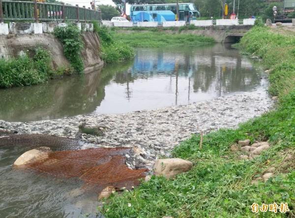 敬鵬大火後,老街溪和平鎮大缺坑溪(見圖)都出現大量魚屍。(資料照)