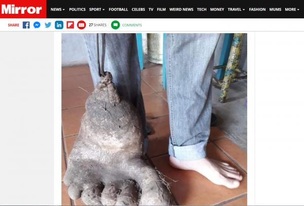 巴西農夫種出一個變種馬鈴薯。(圖擷自鏡報)