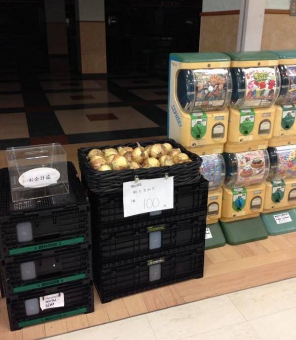 日本「廢墟賣場」只有1間店面營業,且該間營業的店面還是以自助的方式販賣洋蔥,沒有店員駐守。(圖擷取自@yogoren推特)