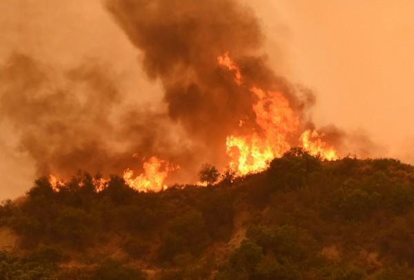 美國加州森林大火,警察冒險穿越火海拯救受困的牧場人員。(歐新社)