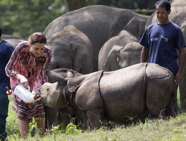 凱特餵犀牛寶寶喝奶。(歐新社)