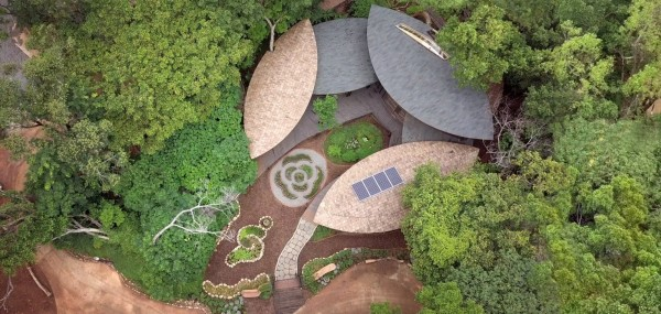 花博后里森林園區「四口之家」空拍圖。(台中市政府提供)