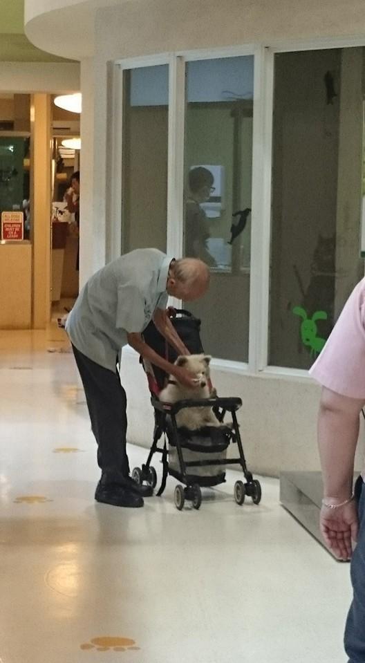 老先生還彎下腰,替狗狗擦臉。(圖擷自《爆廢公社》)