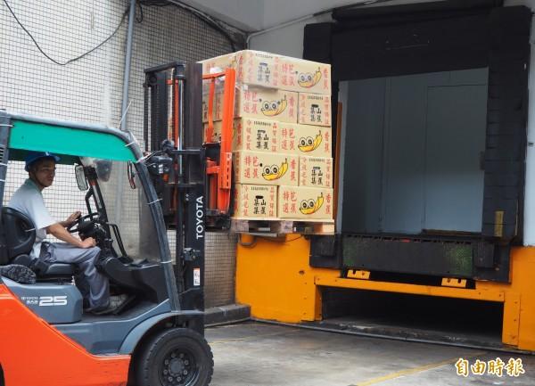 義美食品將收購來的200噸青香蕉,全送入冷凍庫保存。(記者陳昀攝)