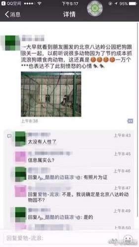 網友爆料,指控八達嶺野生動物園把流浪動物拿去餵肉食動物。(圖擷取自微博)