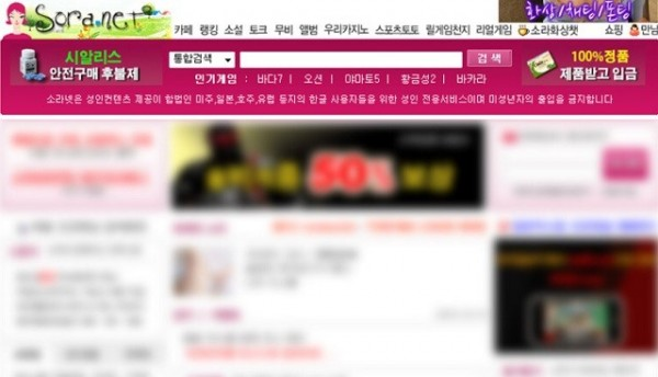 韓國最大色情網站「soranet」目前已被關閉。(圖擷取自網路)
