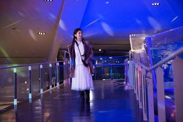 參加者可以觀察到企鵝夜裡的一舉一動。(圖擷自Enjoy Tokyo)