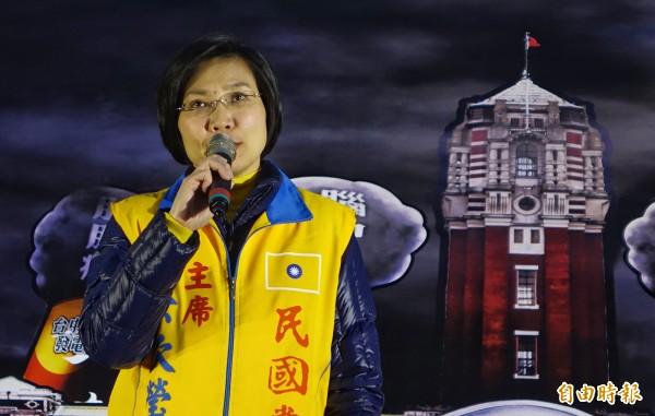 1226全台反空污抗暖化救健康大遊行,副總統候選人徐欣瑩到場說明立場。(記者劉信德攝)