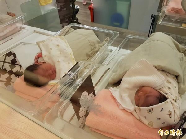 育兒津貼將擴大至4歲以下的幼兒,基隆市預估1年的預算將增加1億5000萬元。(資料照,記者賴筱桐攝)