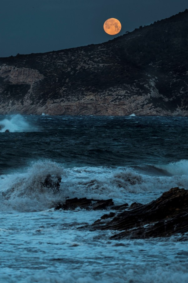 圖中背景為位於西班牙東部的馬約卡島。(歐新社)