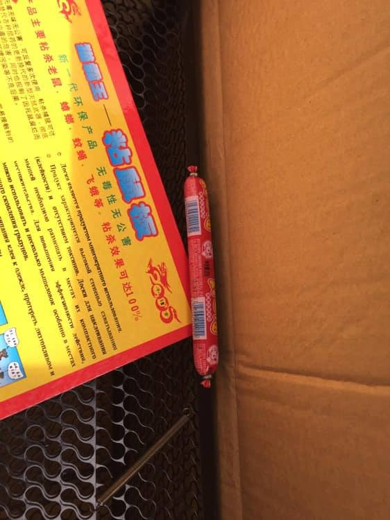 今天金門動物醫院門口被放置裝有疑似中國豬肉腸的包裹。(圖擷自臉書)