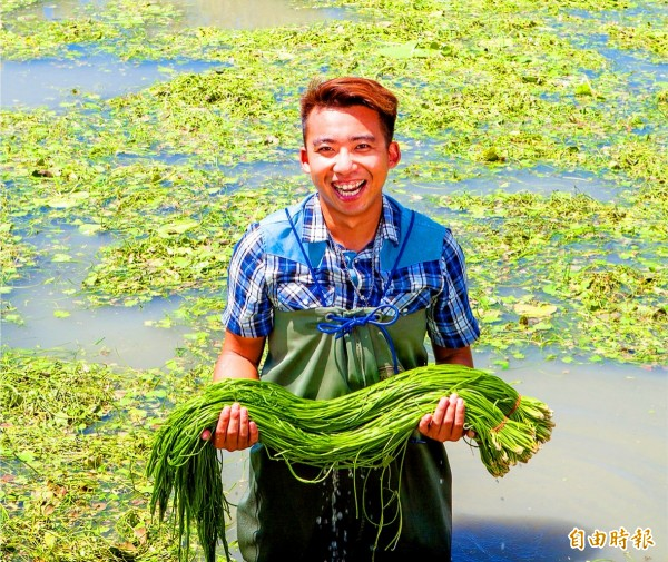 Former hair stylist Chiu Cheng-hung holds up a bunch of water lotus shoots on Thursday at his farm in Kaohsiung.