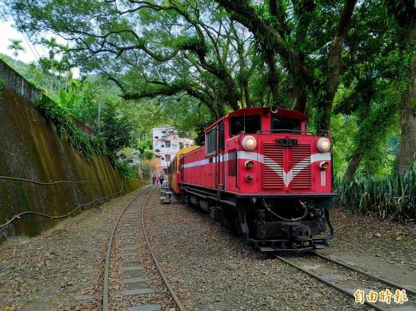 阿里山森林小火車,今天下午再傳出軌事故,這已經是今年第三起。(資料照)