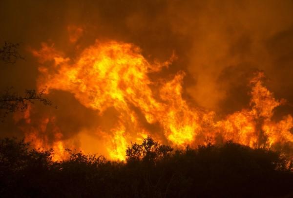 美國加州發生森林大火,當地的葡萄酒與大麻產地損失慘重。(資料圖,美聯社)