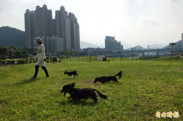 現代人視寵物為毛小孩,當寵物離世時,同樣想好好送他們一程,但許多寵物喪葬業者卻未必合法。示意圖。(資料照,記者邱紹雯攝)