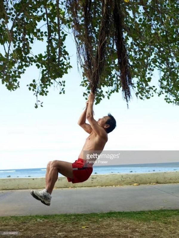 有网友因村上吊在树上,戏称「村上,上了村里的树。」。(图撷取自脸书)