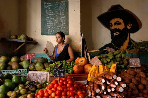 科學家們籲民眾,將飲食改成素食為主。(路透)