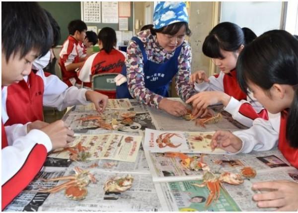 日本福井縣的國中日前開始教學生怎麼吃「越前蟹」的雌蟹「背子蟹」,有些國中生第一次吃到整隻完整、肥美的螃蟹。(圖擷取自《朝日新聞》)