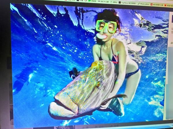 爆料者也質疑,賴奇筠的臉書大頭照是她抓著「龍王魚」一起合照,批評她沒知識。(圖翻攝自賴奇筠臉書)