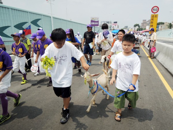 垂楊大橋通車典禮,小朋友帶著小羊兒上路,象徵喜洋洋。(記者余雪蘭攝)