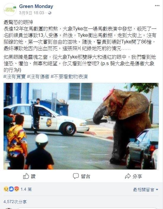 香港社會企業「綠色星期一」貼出大象泰克於24年前臨死前的遺照,呼籲拒絕觀賞、從事一切與大象有關的觀光商業行為。(圖擷取自綠色星期一臉書)