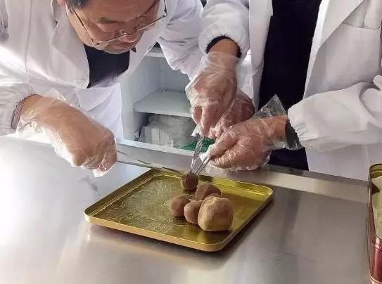 陳姓男子從母羊胃部發現6顆「羊寶」。(取自《四川日報》)