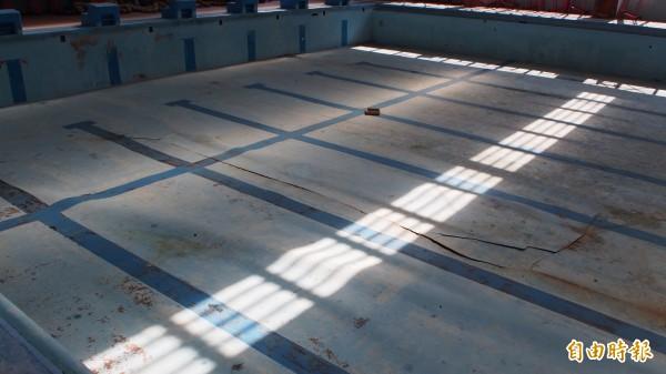 三民公園泳池多處底板有明顯裂痕,整個掀起,無法使用。(記者蔡亞樺攝)