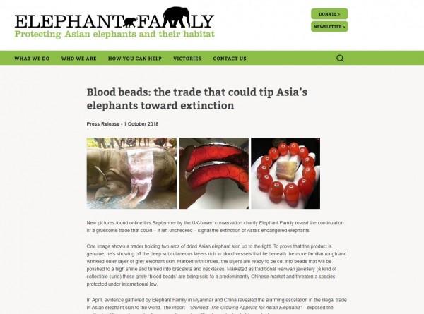 近期有動保組織發現緬甸亞洲象的盜獵情況嚴重,更發現有中國業者用象皮做成血手環。(圖擷取自動保組織大象家族官網)