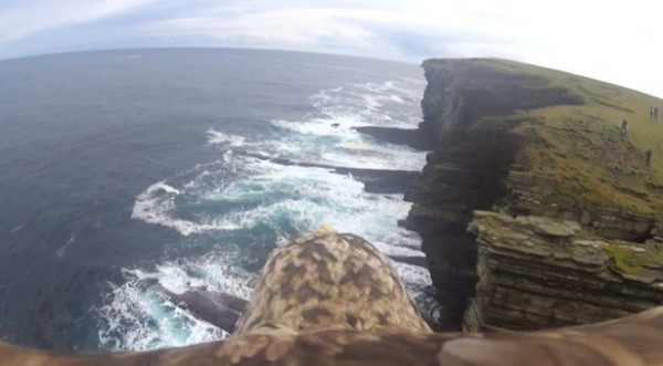 從馬拉的視野可以看到奧克尼島的海岸線及懸崖。(圖擷取自Mercury Press & Media)
