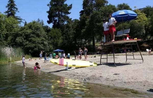 美國東灣日前因有毒藍藻,導致兩湖泊被迫關閉,經整頓後將在昨(12日)重新開放讓民眾游泳。(圖取自《East Bay Times》)
