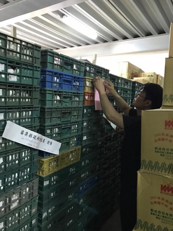 苗栗縣有批發商進到含超量戴奧辛的雞蛋,遭衛生局封存3280台斤,業者怒批政府沒做好管控,竟讓有問題的雞蛋流入最末端的商行。(苗栗縣衛生局提供)