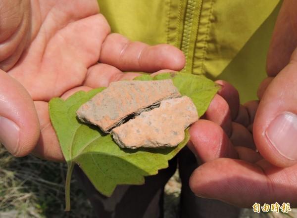 遺址的地面仍有不少破碎的確強陶片,年代約有4000年之久。(記者林良哲攝)