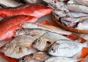 魚鮮處理 徹底解說