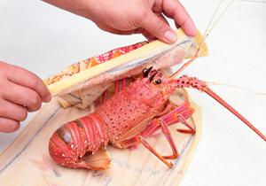 食材處理/高檔海味重保鮮