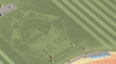 MLB》紅襪送上大禮 精緻的「老爹頭像草皮」