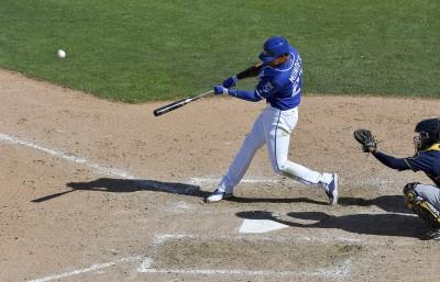 MLB》密集恐懼症慎入 蜂窩進駐春訓球場(影音)